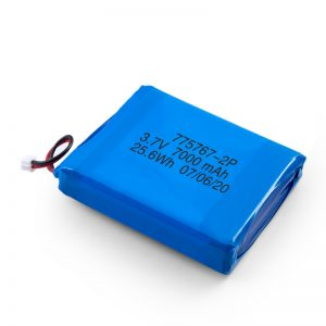 Pin tùy chỉnh 3.7V 2450 2600 3900 4000 4500 4700 5000 6000 9000Mah Polymer Lipo